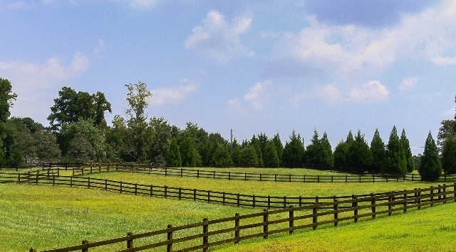 North Carolina Horse Farms and Equestrian Property for Sale